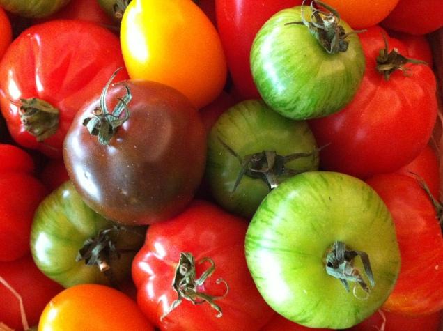 heirloom tomatoes, singapore