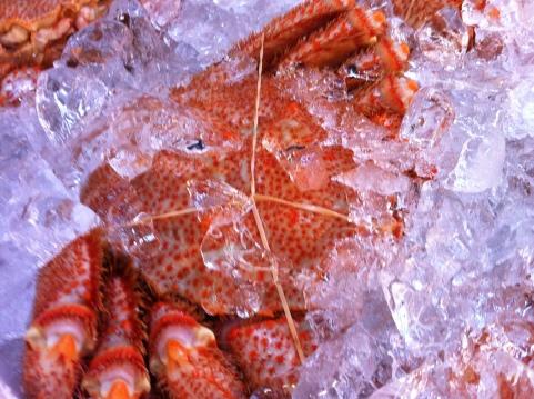 Crab at Tsukji Market, Tokyo