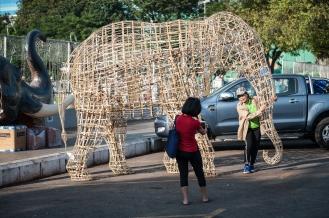 Bamboo elephant 2
